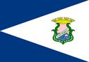História da Bandeira do Município de Icaraíma